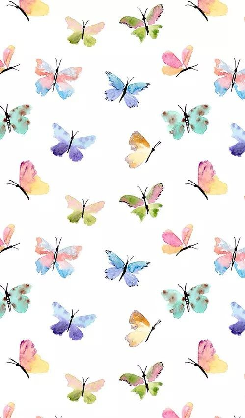 Hermosas mariposas de colores related keywords - Imagenes de mariposas de colores ...