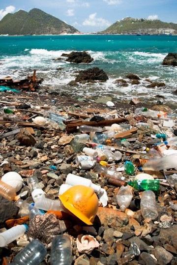 fotos de agua contaminada basura
