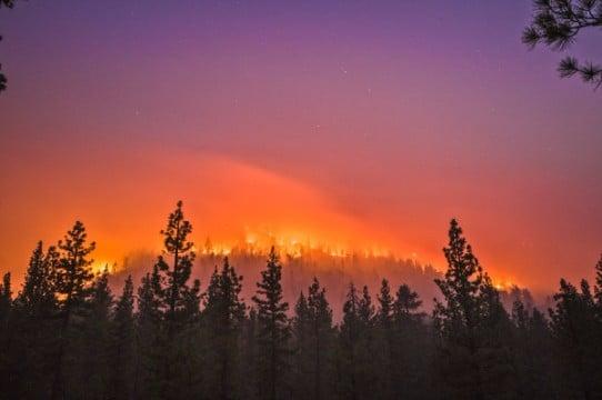 fotos de incendios forestales en cordova