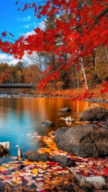 paisajes otoñales del mundo mas hermosos