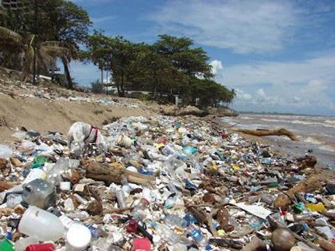 principales contaminantes ambientales quimicos