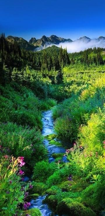 fondos de paisajes para fotos gratis