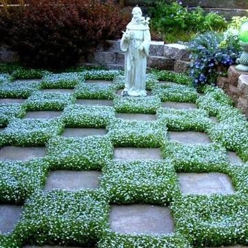 Ideas para hacer un jardin peque o y moderno en casa for Ideas para hacer un jardin