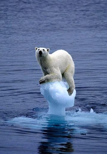 imagenes de cambios climaticos mundo