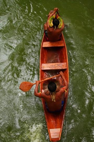 imagenes de la selva amazonica mejores