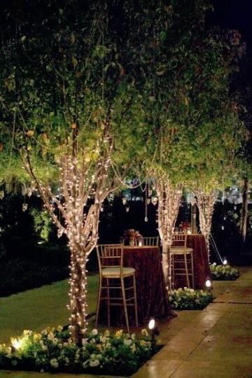 Hermosos y econ micos jardines para eventos en tijuana for Jardines bonitos y economicos
