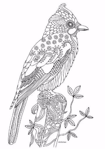 animales que vuelan para colorear a lapiz