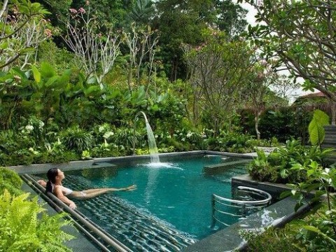 aprende ya como hacer una piscina natural o ecologica