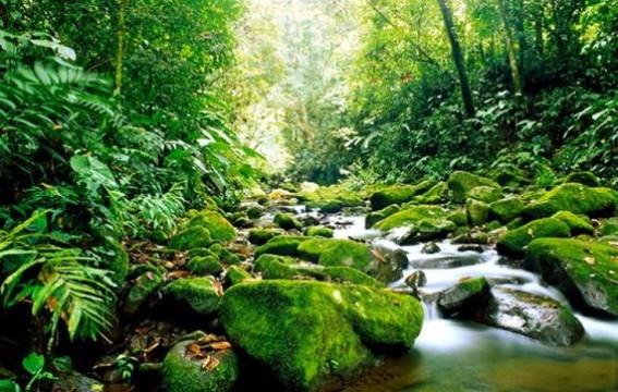 imagenes de areas naturales protegidas del mundo