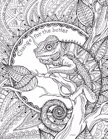 Faciles Imagenes De Iguanas Para Colorear Y A Lapiz