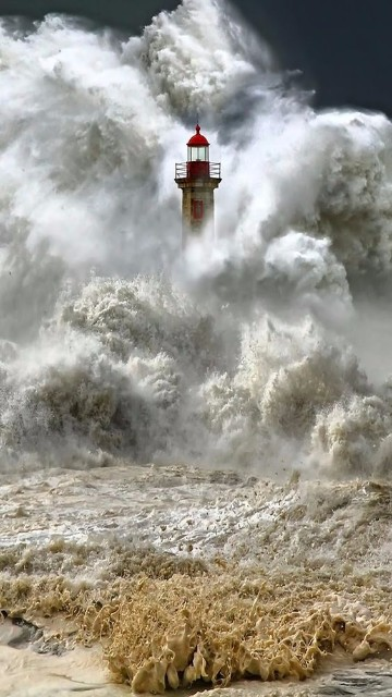 maremotos en el mundo 2015