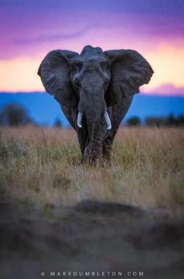 reservas naturales del mundo protegidas