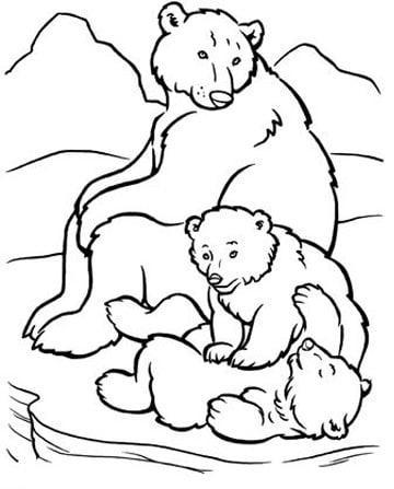 Dibujos De Osos Polares Para Colorear Para Niños Imagenes