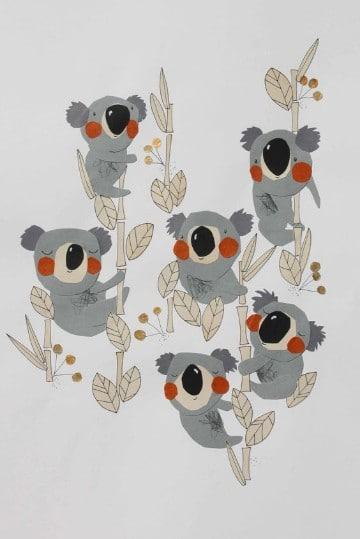 imagenes de koalas animados bebes