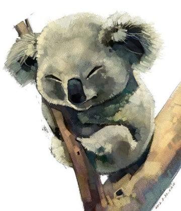 imagenes de koalas animados graciosos