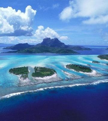 imagenes de las islas galapagos flora y fauna
