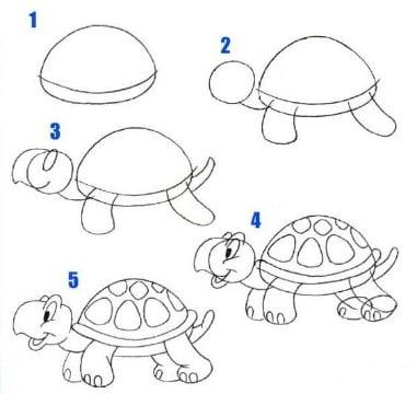 imagenes de tortugas para dibujar a lapiz