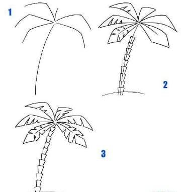 palmeras para dibujar tropicales