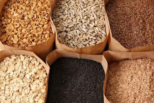 tipos de semillas comestibles nombres
