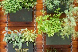 Pr cticas maquetas sobre el medio ambiente para ni os for Viveros de plantas en lima