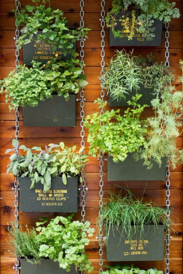 viveros de plantas ornamentales en lima