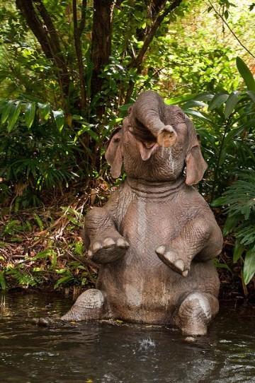 imagenes de elefantes bebes para niños