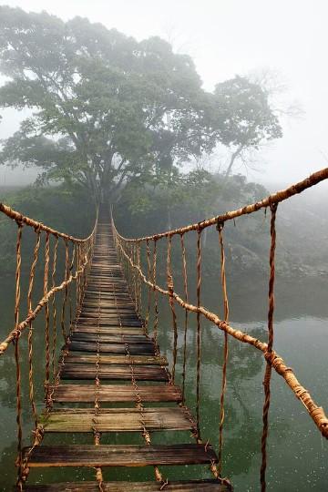 imagenes de puentes de madera bonitos