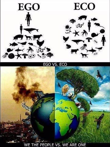 imagenes del deterioro ambiental para descargar