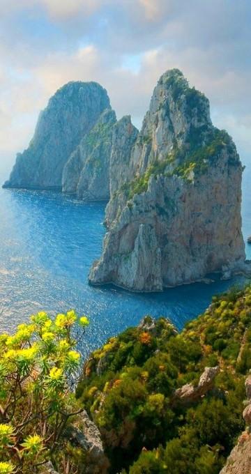 imagenes del mar mediterraneo bosque