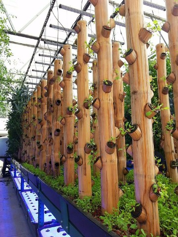 Jardines con bambu en decoracion de paredes para exterior - Canas de bambu decoracion exterior ...
